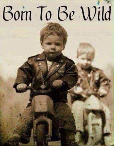 Young Wild Bikers